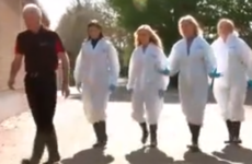 The Real Housewives of Orange County continued their Ireland trip and it just got worse