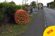 These adorable pumpkin bales of hay have been popping up in Cavan