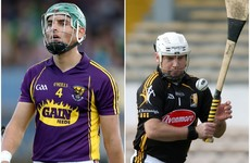 Leinster club winner and Kilkenny All-Ireland champion join Wexford backroom team