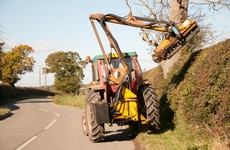 "Environmentalists cut ""deep wounds"" in government's bill on hedge-cutting extension"
