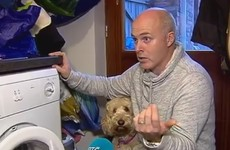 Hero dog helps to save five-year-old trapped in tumble dryer