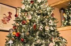 Vote: Real Christmas tree or fake Christmas tree?