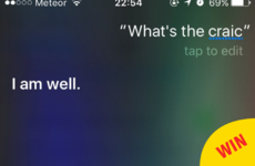 11 times Irish Siri was just the hero we all deserve