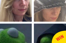 Someone's mam made herself into an evil kermit meme and it's going insanely viral