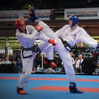 The story of how Ireland took the Taekwon-do world by storm