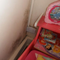 Experts say tenants are not to blame for council flat mould