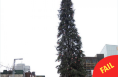 Montreal put up their Christmas tree this week and everyone is taking the piss