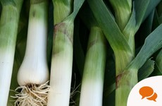 GIY: For first-time vegetable growers, leeks are an easy and tasty option