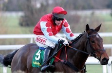 Betfair defends decision to void Leopardstown bets
