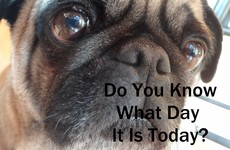 Do You Know What Day It Is Today?
