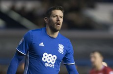 Birmingham striker Jutkiewicz would 'embrace' an Ireland call-up