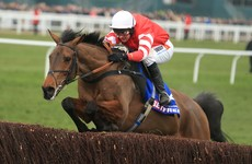 2015 Gold Cup winner loses fitness battle to make this year's race