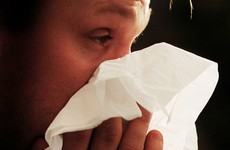 Flu epidemic will peak in the next two weeks
