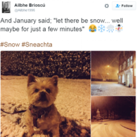 It snowed for all of 15 minutes in Ireland today and '#sneachta' started trending on Twitter