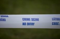 Man killed in Dublin attack this morning