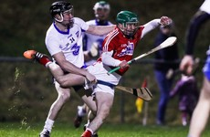 Horgan and Kearney the scoring stars as Cork stay unbeaten in Munster with win over Waterford