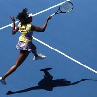 ESPN criticised over Venus 'gorilla' comment