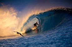 Wipeout: Surfers to be drug-tested