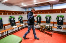 As it happened: Toulouse v Connacht, Champions Cup pool finale