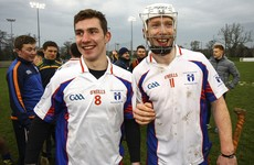 Limerick and Clare stars to the fore as Fitzgibbon champs Mary I claim 21-point success