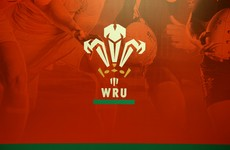 Wales won't cash in historic claim to 20% of Ireland's Rugby World Cup profits