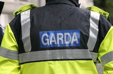 Two young men charged over burglaries in Offaly