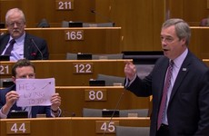 'He's lying to you' - UK MEP explains why he held up sign behind Nigel Farage