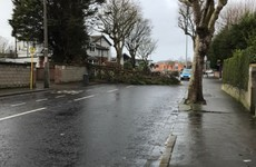 Motorists urged to take care as gale force winds to persist today