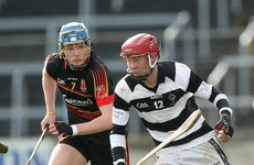 Good day for Kilkenny and Wexford hurling as they bag Leinster senior schools semi-final spots