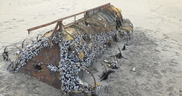 Pictures: A Cuban migrant boat has washed up on a beach in Sligo