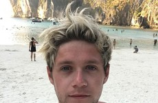 Niall Horan backpacked around Asia on a budget of €20 a night... it's The Dredge