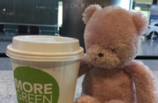 This teddy is being reunited with its owner after being left behind at Cork Airport