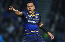Leinster captain Nacewa faces spell on the sidelines after knee surgery