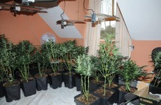 Emergency services called to house fire, discover cannabis grow house