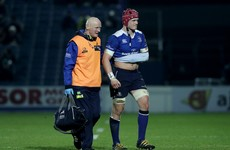 Leo Cullen provides injury update on Leinster's walking wounded after Edinburgh win