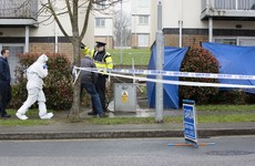 Gardaí probe fatal stabbing after man left dead at Tallaght house