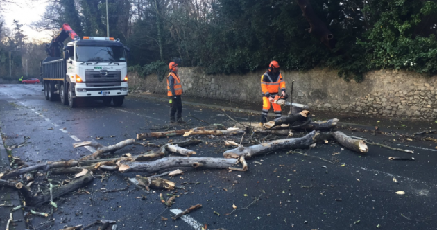 More than 56,000 without power as Storm Doris downs power lines, trees and cancels flights