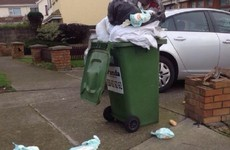 12,000 homes in Dublin will soon be monitored for what they're putting in their green bins