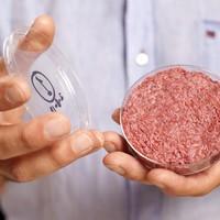 Food processor Dawn Farms will pump �25m into its 'meat innovation' hub in Naas