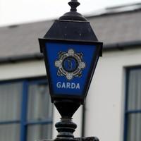 Gardaí seek help finding missing woman