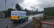 Gardaí want to speak to a couple in relation to the murder of pensioner Paddy Lyons