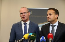 Poll shows Coveney the favourite over Varadkar among Fine Gael voters