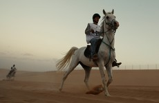 Could horses be the way forward for women in Saudi Arabia?