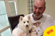 Two daughters in Carlow got their dad the best tshirt to celebrate his love of the family dog