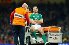 'Stinger' won't keep Murray from facing England, but it's a leg fracture for Tommy Bowe