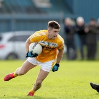 Armagh hand Louth first league defeat, while Wexford continue winning ways Division 4