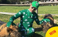 A complete rundown of the weird ways celebrities wished us a happy St Patrick's Day