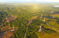 Ireland's largest windfarm begins powering 50,000 homes