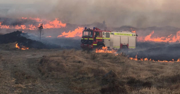A dry weekend has sparked a series of gorse fires across Ireland