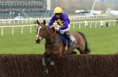 6 horses that could guide you to Aintree Grand National glory